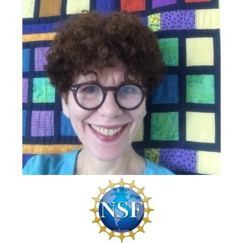 Dorothy Aronson, NSF